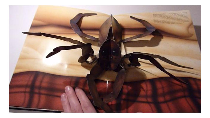 Pop-up Book of Phobias - Spiders