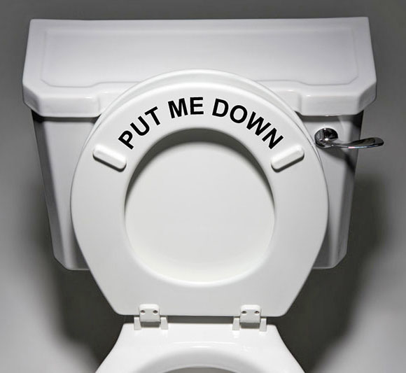 Put Me Down Toilet Seat Decal Sticker