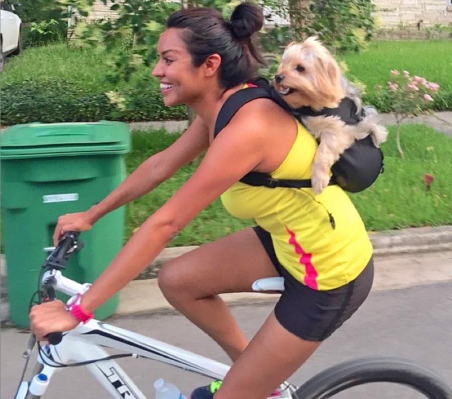 Pet Life Dog Carrier