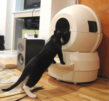 Self-Cleaning Kitty Litter Robot