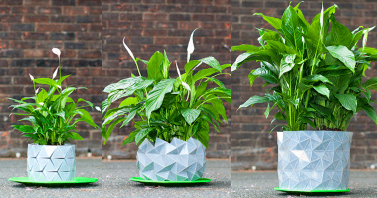 This Incredible Shape-Shifting Origami Planter Grows With Your Plant Over Time