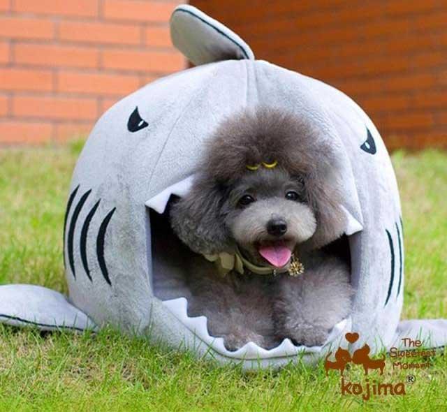 Unique Cozy Home Made Home: Shark Dog Bed