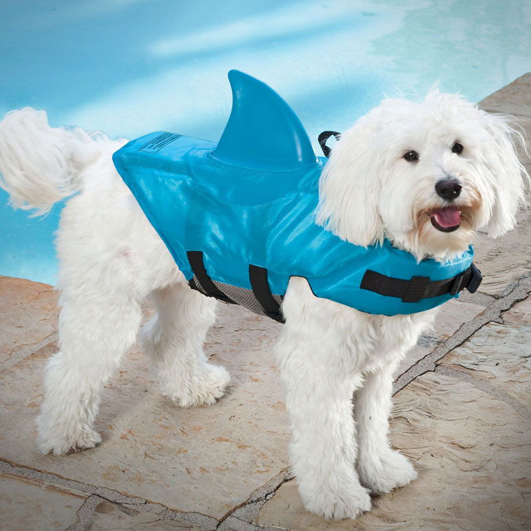Shark Fin Dog Costume The Shark Fin Dog Life Jacket