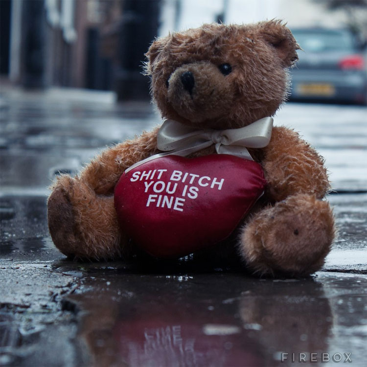 Shit Bitch You Is Fine Teddy Bear
