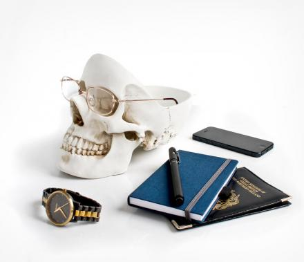 Skull Shaped Desk Organizer