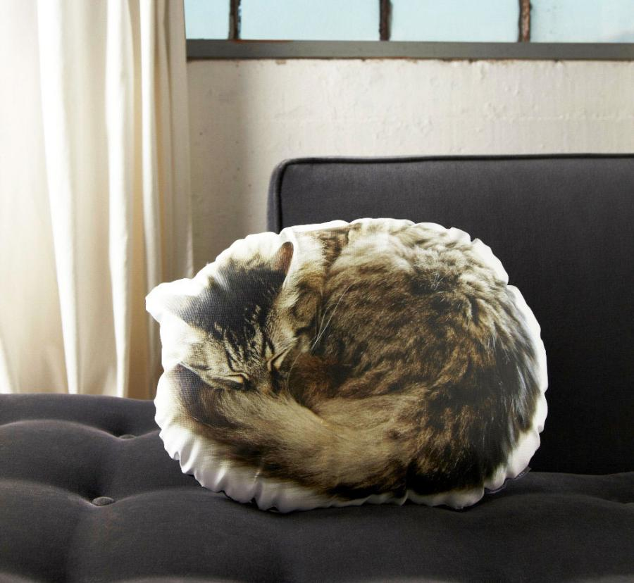 I Want To Buy Used >> Sleeping Cat Pillow