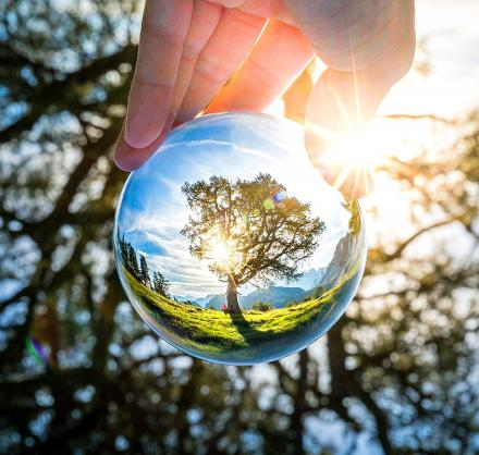 Spherical Crystal Ball Lens Gets You Amazing Photographs