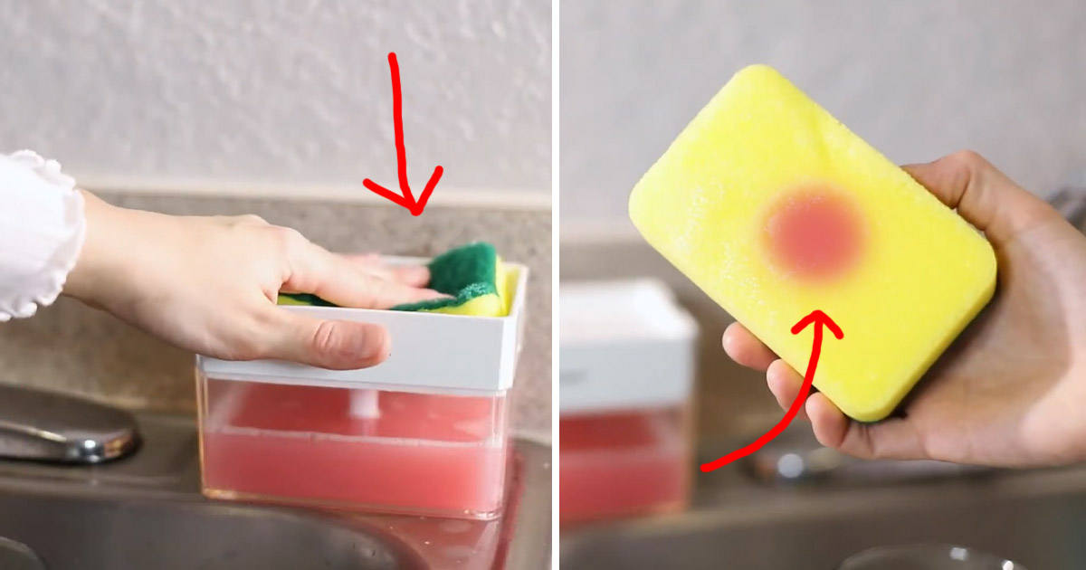 This Ingenious Sponge Soap Dispenser Lets You Instantly Get Soap On Your Sponge For Scrubbing