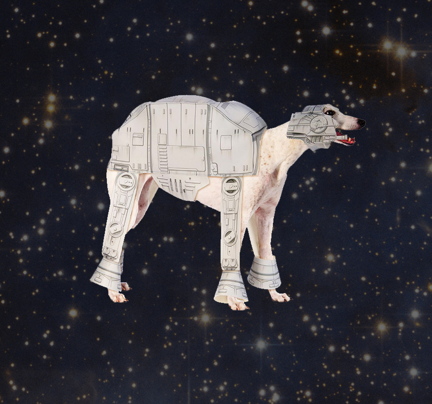 Star Wars At At Imperial Walker Dog Costume
