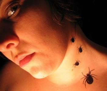 Temporary Spider Tattoos