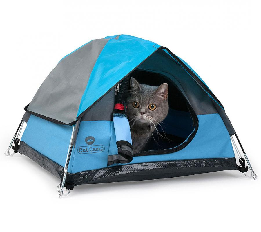 the cat camp is a mini camping tent for your cat
