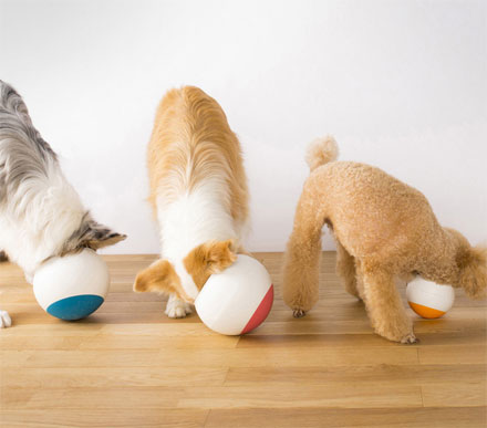 The Oppo Food Ball Slows Down Your Dogs Eating
