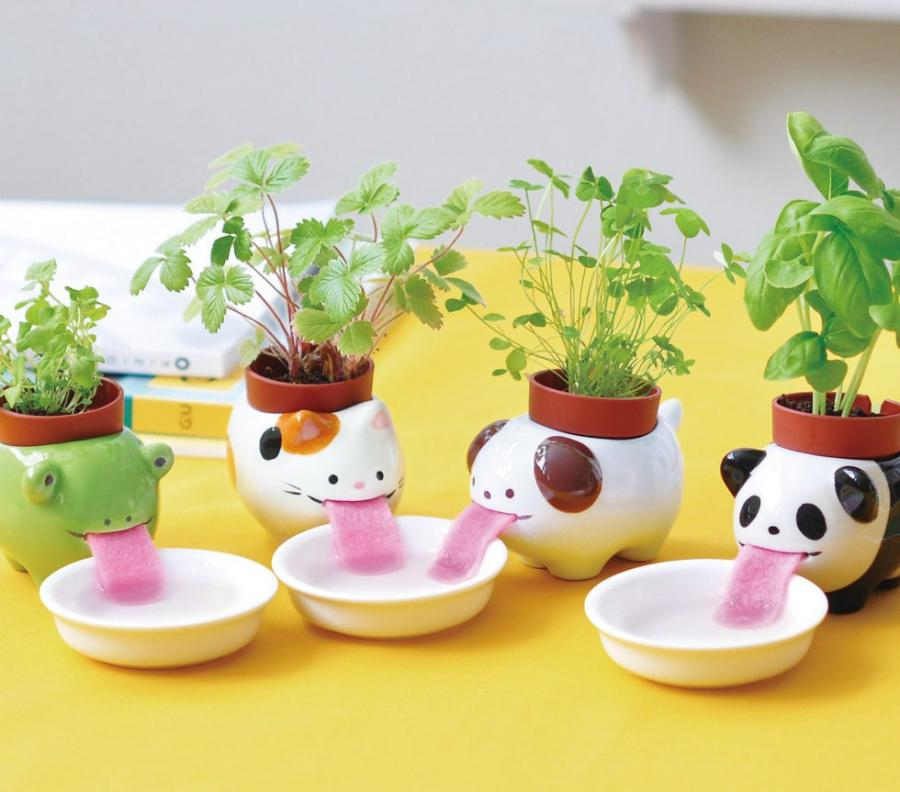 These drinking animal planters use sponge like tongues to soak up water through bowls you place in front of them and are a fun way for kids to learn how to