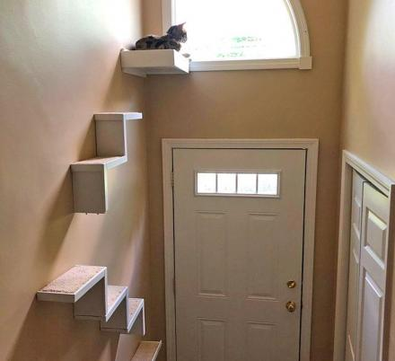 These Floating Cat Stairs Give Your Kitty A View Outside While They Lounge