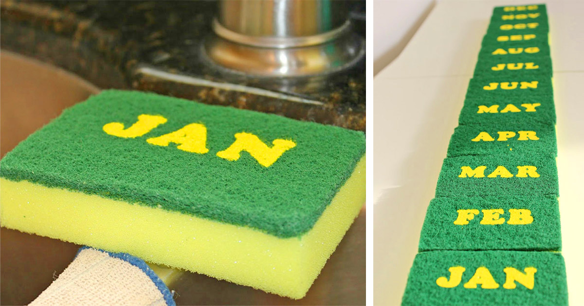 These Genius Calendar Sponges Are Labeled With Each Month So You Know When To Replace It