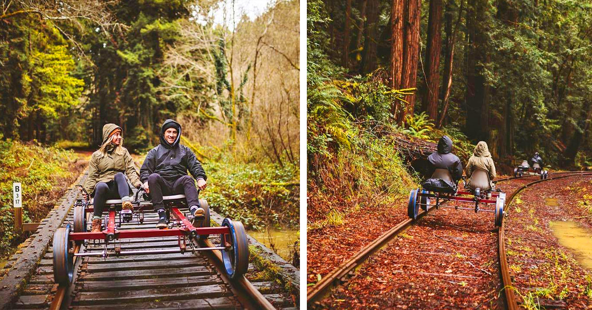 These Rail Bike Tours Let You Pedal Through The Redwood Forest In California