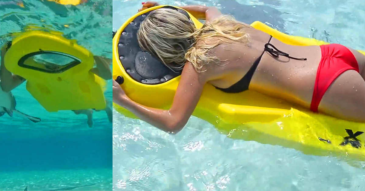 This Board Gives You a Window To The Underwater Environment Without Having To Use a Snorkel