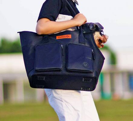 This Brilliant Pet Carrier Is Also A Stylish Purse