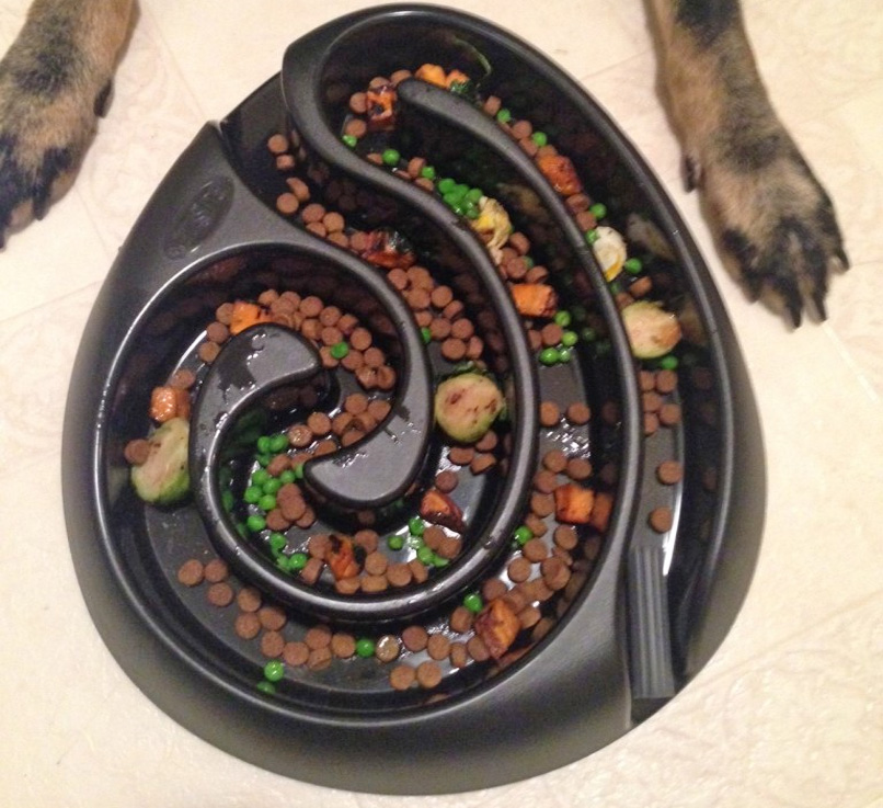 This Food Maze Dog Bowl Keeps Your Dog From Eating Too Fast