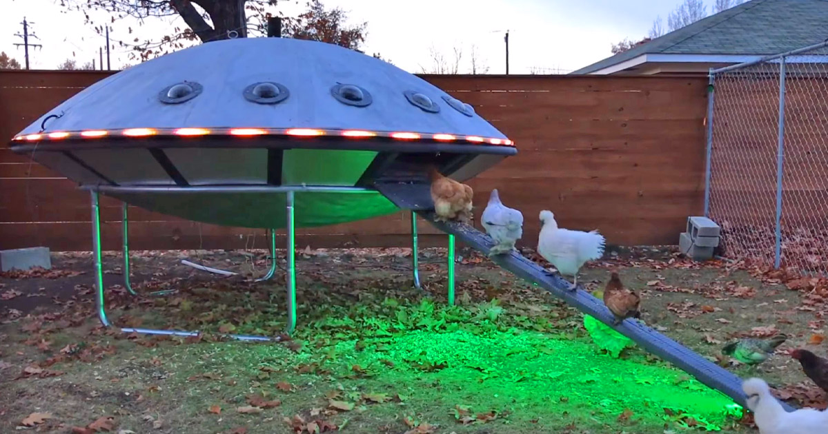 This Guy Built a UFO Shaped Chicken Coop and Posted The Plans Online