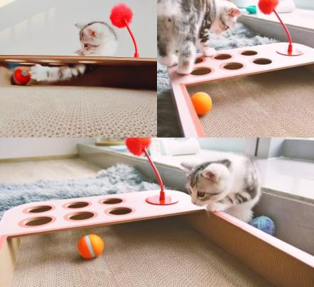 This Interactive Cat Board Game Has a Robotic Ball That Will Keep Them Busy For Hours