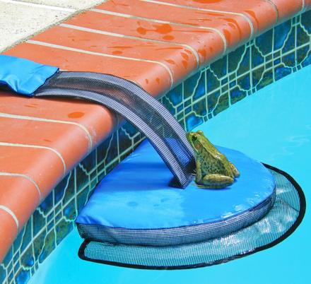 This Mini Pool Ramp Helps Frogs and Other Small Critters Out Of Your Pool