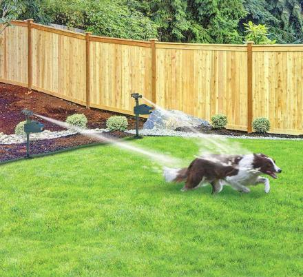 This Motion Activated Sprinkler Repeller Keeps Animals Out Of Your Garden