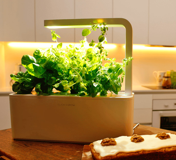 This Smart Herb Garden Starter Kit Makes Growing Your Own