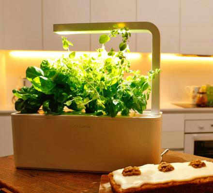 This Smart Herb Garden Starter Kit Makes Growing Your Own Herbs a Breeze