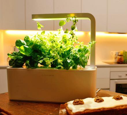 This Smart Herb Garden Starter Kit