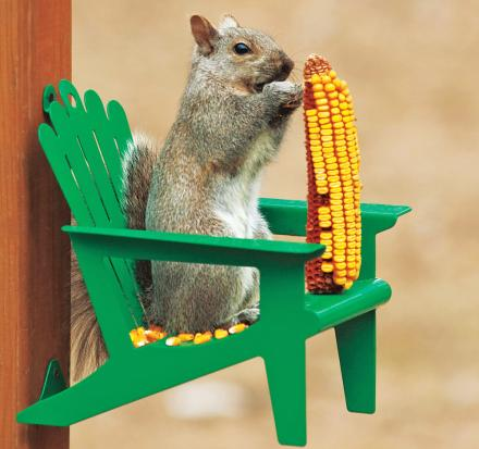 This Squirrel Chair Attaches To Your Tree