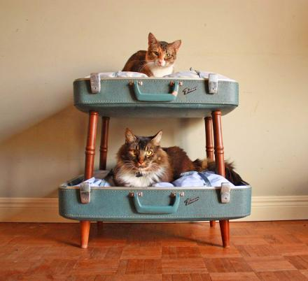 This Suitcase Cat Bunk Bed Is a Brilliant Way To Re-purpose Your Old Luggage