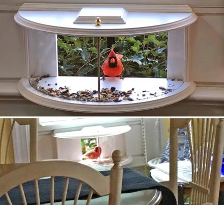 This Unique Bird Feeder Brings Birds and Squirrels Partially Into Your House
