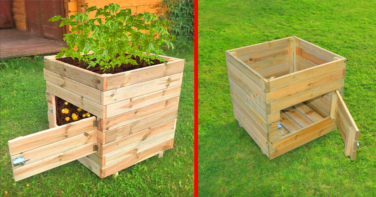 This Wooden Potato Planter Has a Door To Easily Access Your Home-Grown Potatoes