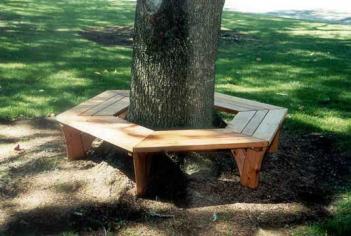 Wrap Around Tree Bench