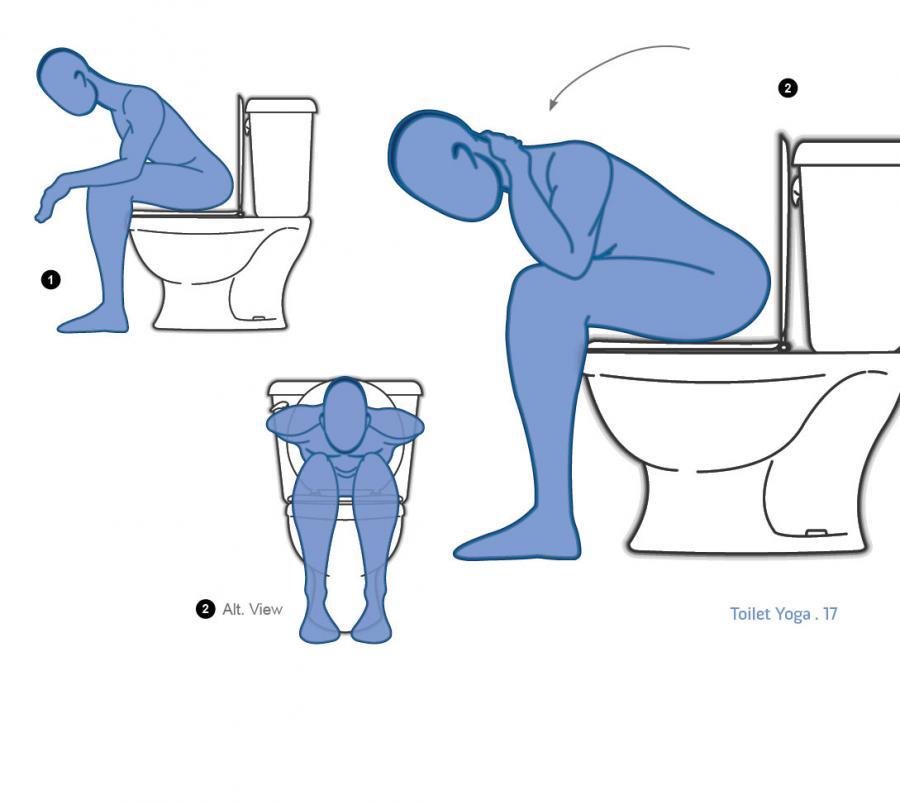 Toilet Yoga Book