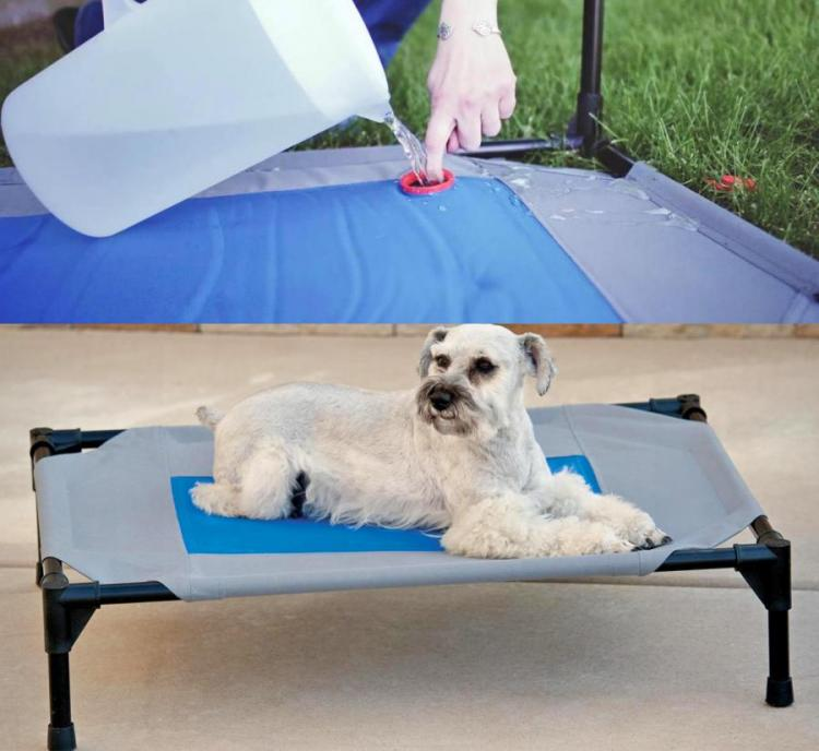 Cooling Outdoor Dog Bed Stores Cold Water To Keep Your Pooch Cool