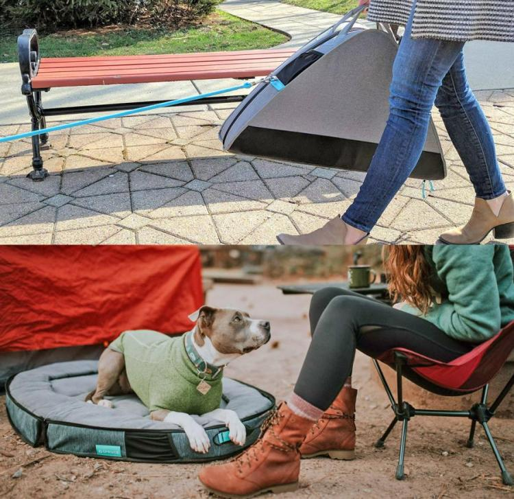 Travel Dog Bed Folds In Half, Lets You Store Items In Center