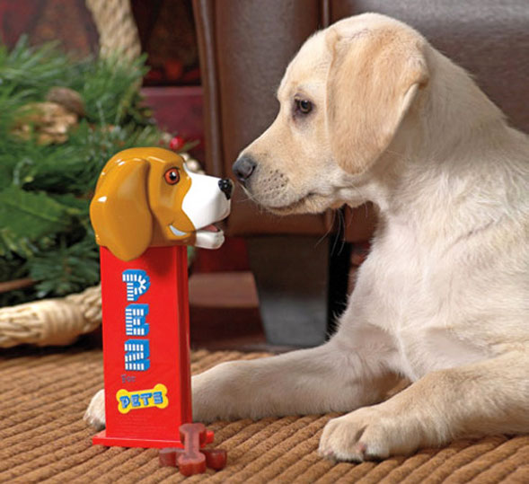 Giant Dog Pez Dispenser Dispenses Bone Shaped Dog Treats