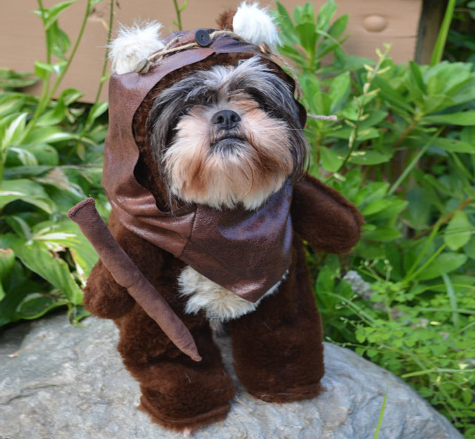 20 best star wars gift ideas for 2017 star wars ewok dog costume solutioingenieria Image collections