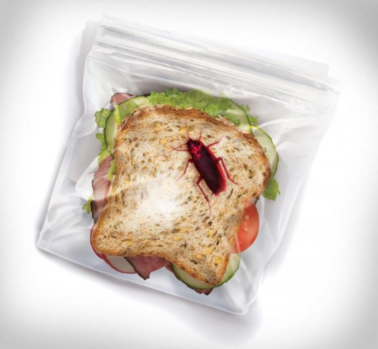 Sandwich Bags With Bugs To Deter Office Lunch Thieves