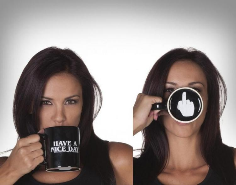 Have A Nice Day - Prank Middle Finger Mug