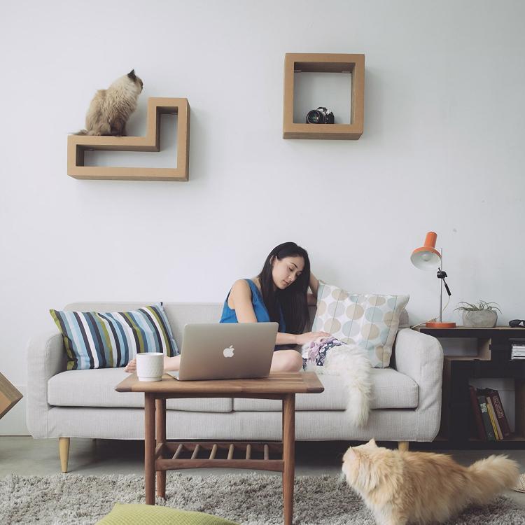 Katris Modular Cat Shelves Are Tetris Blocks For Your