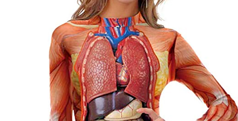 Anatomically Correct Swimsuit Halloween Costume - Funny guts women's swimsuit costume/cosplay