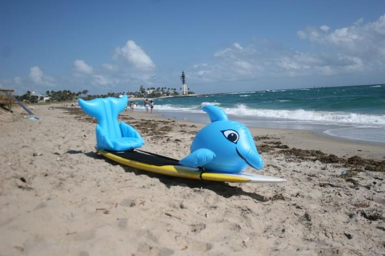 Stand-up Paddle-Board Floats Turn Your Board Into a dolphin - dolphin floats for SUP