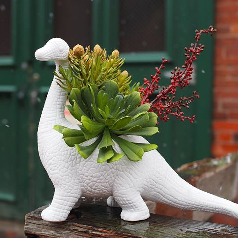 Aplantasaurus: Dinosaur Shaped Planter - Brontosaurus plant holder