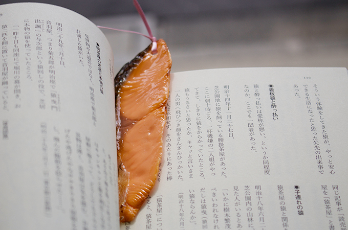 Salmon Bookmark