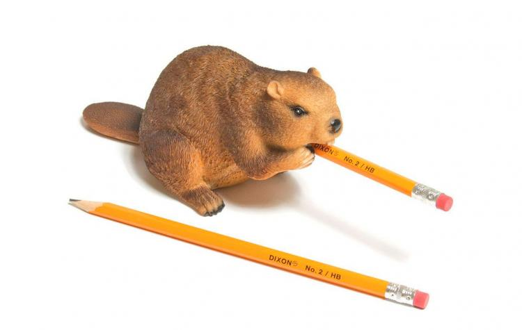 Beaver Pencil Sharpener