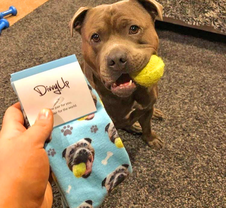 Custom Socks With Your Pets Face On Them