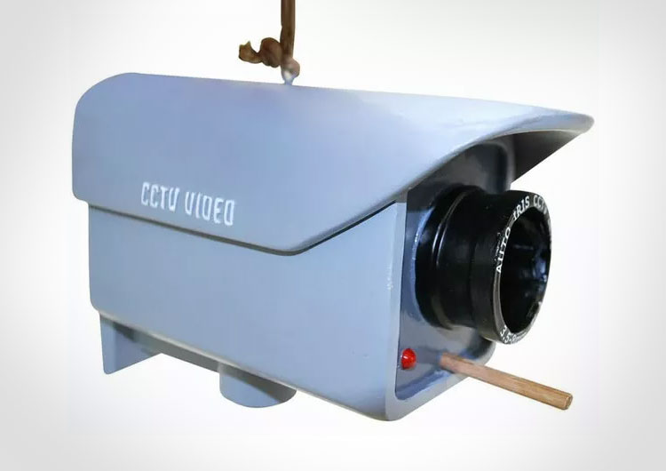 CCTV Security Camera Birdhouse